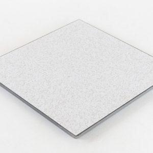Triad Cement Filled Raised Floor Panel
